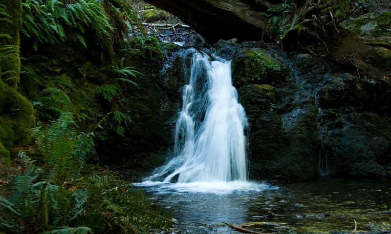 Cascade Falls in Moran State Park on Orcas Island