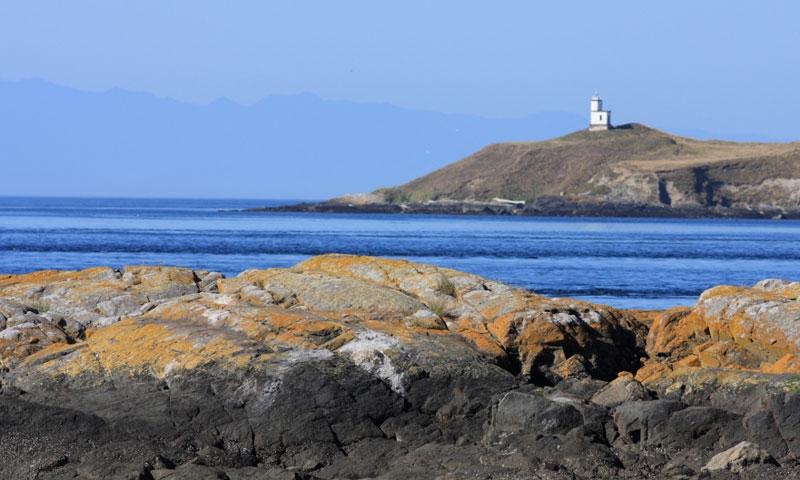 Cattle Point Lighthouse In Washington San Juan Islands