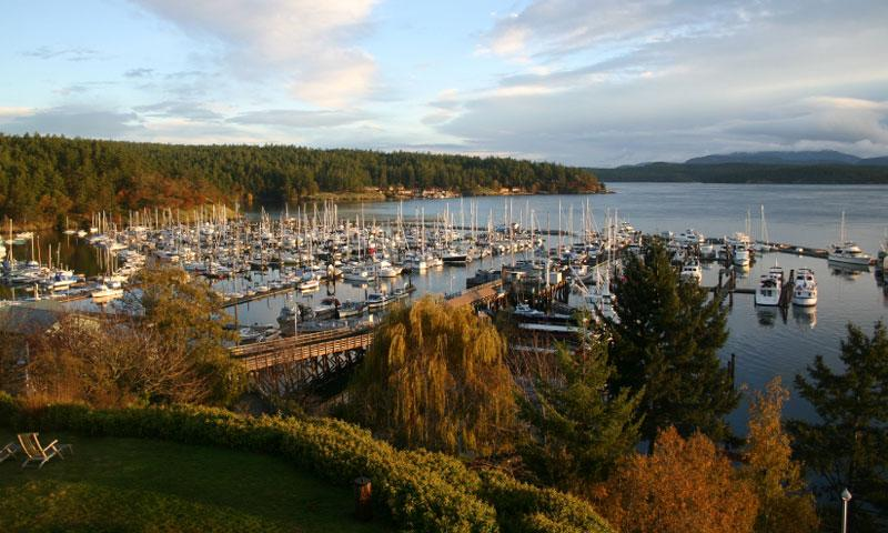 Visit Friday Harbor Washington San Juan Island Vacations