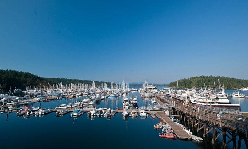 Visit Friday Harbor Washington San Juan Island Vacations