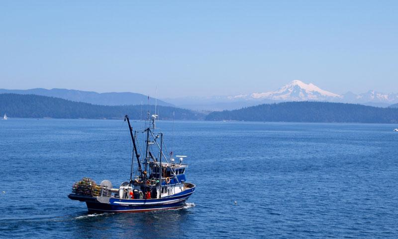 Deep Sea Fishing near the San Juan Islands