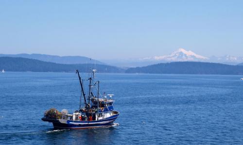 San juan islands washington fishing fly fishing alltrips for Deep sea fishing maryland